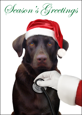 veterinarian christmas card l