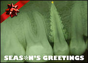 Dental X-Ray Christmas Card
